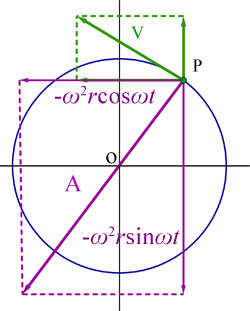 circle - the acceleration vector