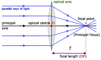 Image result for convex lens ray diagram